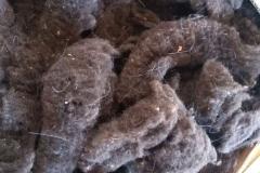 Wolle-waschen11