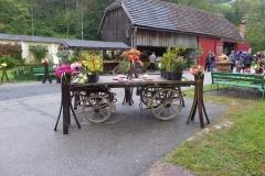 Herbstfest (19) (1024x768)