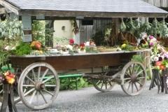 Herbstfest (22) (1024x768)